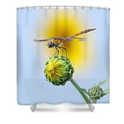 Dragonfly In Sunflowers Shower Curtain by Robert Frederick