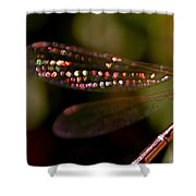 Dragonfly Jewels Shower Curtain by Rona Black