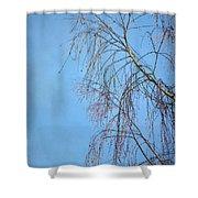 Dream Blue Shower Curtain by Evelina Kremsdorf