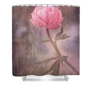Dream-struck Shower Curtain by Priska Wettstein