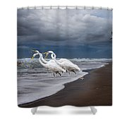 Dreaming of Egrets by the Sea II Shower Curtain by Betsy C  Knapp