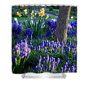 Dreaming Of Spring Shower Curtain by Carol Groenen