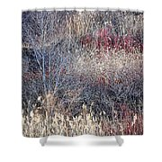 Dry Grasses And Bare Trees Shower Curtain by Elena Elisseeva
