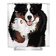 Dylan Rocks Shower Curtain by Liane Weyers