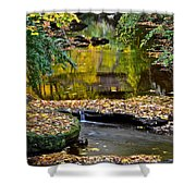 Eden Shower Curtain by Frozen in Time Fine Art Photography