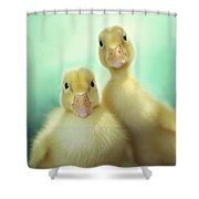 Edgar And Sally Shower Curtain by Amy Tyler