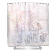 Elephants - Sketch Shower Curtain by John Edwards