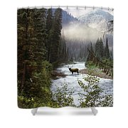 Elk Crossing Shower Curtain by Leland D Howard