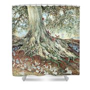 Elves In Rabbit Warren Shower Curtain by Photo Researchers