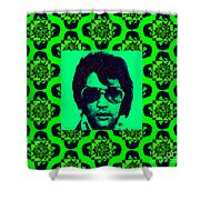 Elvis Presley Window p88 Shower Curtain by Wingsdomain Art and Photography
