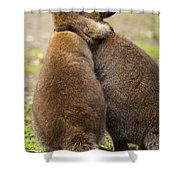 Embrace Shower Curtain by Mike  Dawson
