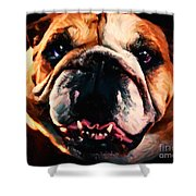 English Bulldog - Painterly Shower Curtain by Wingsdomain Art and Photography