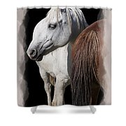 Equine Horse Head And Tail Shower Curtain by Daniel Hagerman