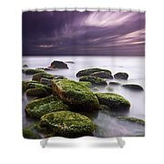 Ethereal Shower Curtain by Jorge Maia