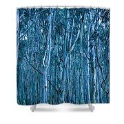 Eucalyptus Forest Shower Curtain by Frank Tschakert