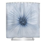 Evanescent Cyanotype Shower Curtain by John Edwards