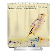 Even Sparrows Matter Shower Curtain by Kathy Barney