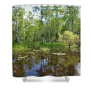 Everglades Lake Shower Curtain by Rudy Umans