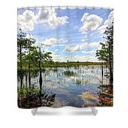 Everglades Landscape 8 Shower Curtain by Rudy Umans