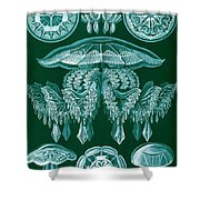 Examples Of Discomedusae Shower Curtain by Ernst Haeckel