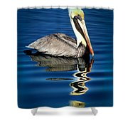 Eye Of Reflection Shower Curtain by Karen Wiles