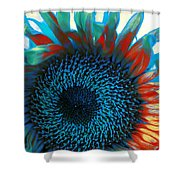 Eye Of The Sunflower Shower Curtain by Music of the Heart