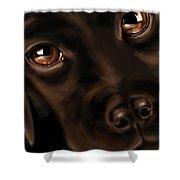 Eyes Shower Curtain by Veronica Minozzi
