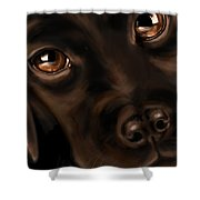 Eyes Shower Curtain by Veronica Minozzi