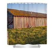 Faded With Time Shower Curtain by Fran Riley
