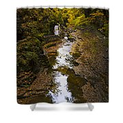 Fall Colors Shower Curtain by Eduard Moldoveanu