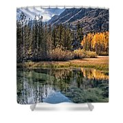 Fall Reflections Shower Curtain by Cat Connor