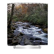 Fall Seclusion Shower Curtain by Skip Willits