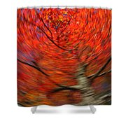 Fall Tree Carousel Shower Curtain by Juergen Roth