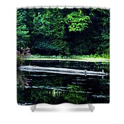 Fallen Log in a Lake Shower Curtain by Bill Cannon