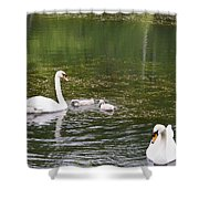 Family Of Swans Shower Curtain by Teresa Mucha