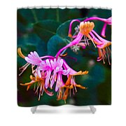 Fantasy Flowers Shower Curtain by Omaste Witkowski