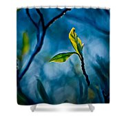 Fantasy In Blue Shower Curtain by Linda Unger