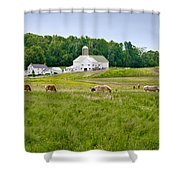 Farm Life Shower Curtain by Guy Whiteley