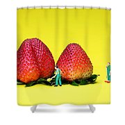 Farmers Working Around Strawberries Shower Curtain by Paul Ge