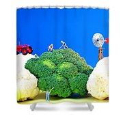 Farming On Broccoli And Cauliflower Shower Curtain by Paul Ge