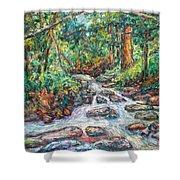 Fast Water Wildwood Park Shower Curtain by Kendall Kessler