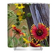 Fenceline Wildflowers Shower Curtain by Robert Frederick