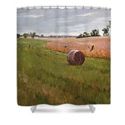 Field Day Shower Curtain by Scott Harding
