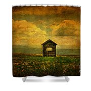 Field Of Dandelions Shower Curtain by Lois Bryan