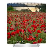 Field Of Poppies At The Lake Shower Curtain by Guido Montanes Castillo