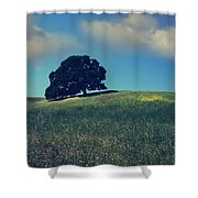 Find It in the Simple Things Shower Curtain by Laurie Search