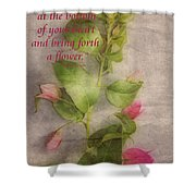 Find The Seed Shower Curtain by Cheryl Young