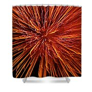 Fire In The Sky Shower Curtain by Carolyn Marshall