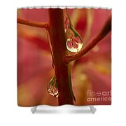 Fireweed Shower Curtain by Crystal Magee