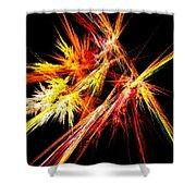 Fireworks Shower Curtain by Anastasiya Malakhova